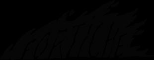 cropped-fortiche_logo_white
